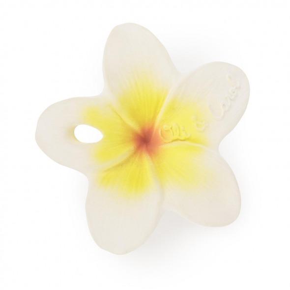Mordedor mini Hawaii the Flower de Oli & Carol